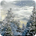 大雪纷飞动态壁纸 Snowfall Full Live Wallpaper 1.3
